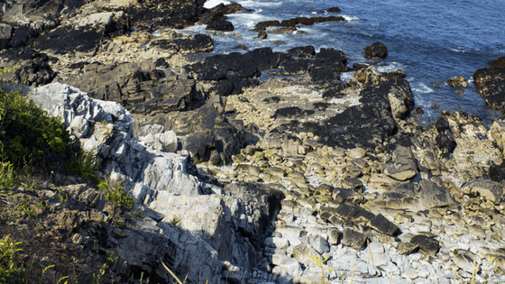 From high up on the bluffs at Monhegan Island, you can look down at miles of rocky Maine coastline.