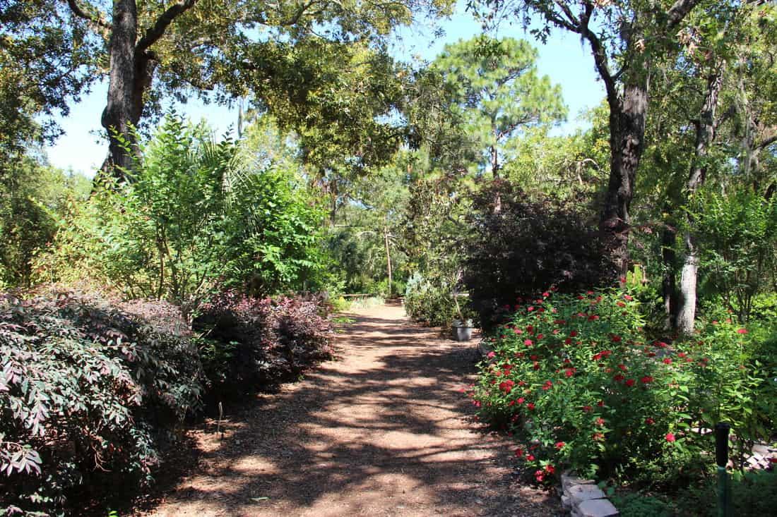 3 Days On Florida S Nature Coast Homosassa Springs And
