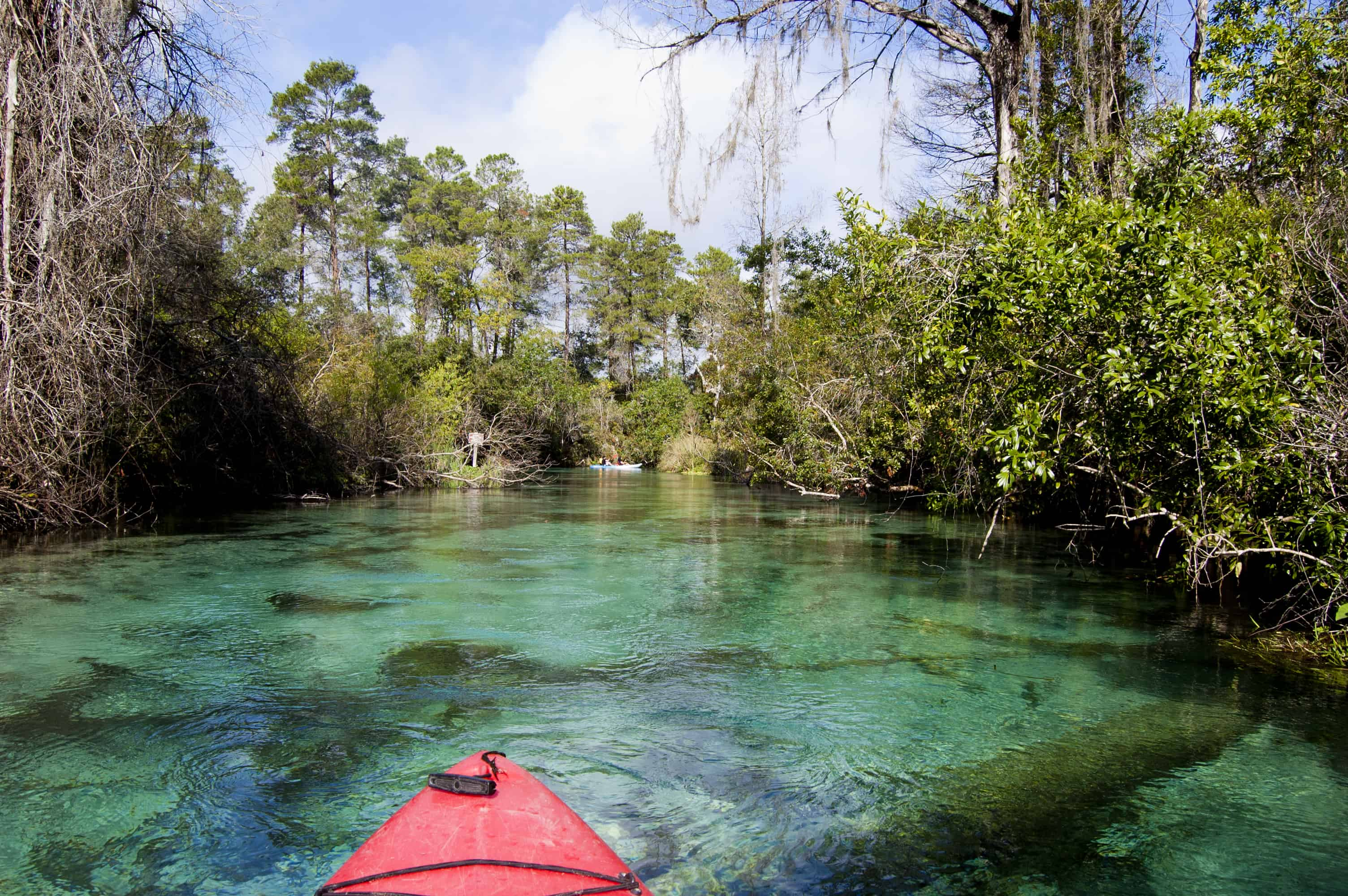 Kayaking on the Weeki Wachee River