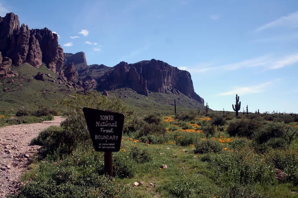 Lost Dutchman State Park Tonto Border