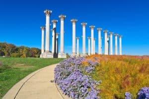 Columns at National Arboretum