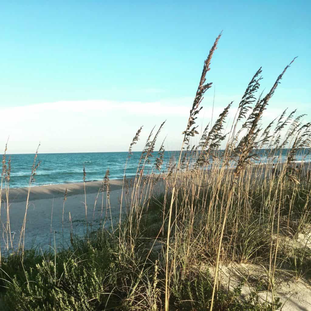 Atlantic Coast Beach and Sea Oats