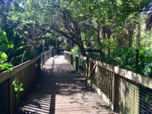 Boardwalk at Brevard Zoo