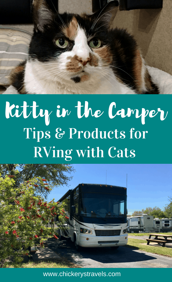 Read these tips for RV travel with cats. We use these products and ideas to make our kitty more comfortable in the camper. A happy cat is key to making the entire family happy campers.