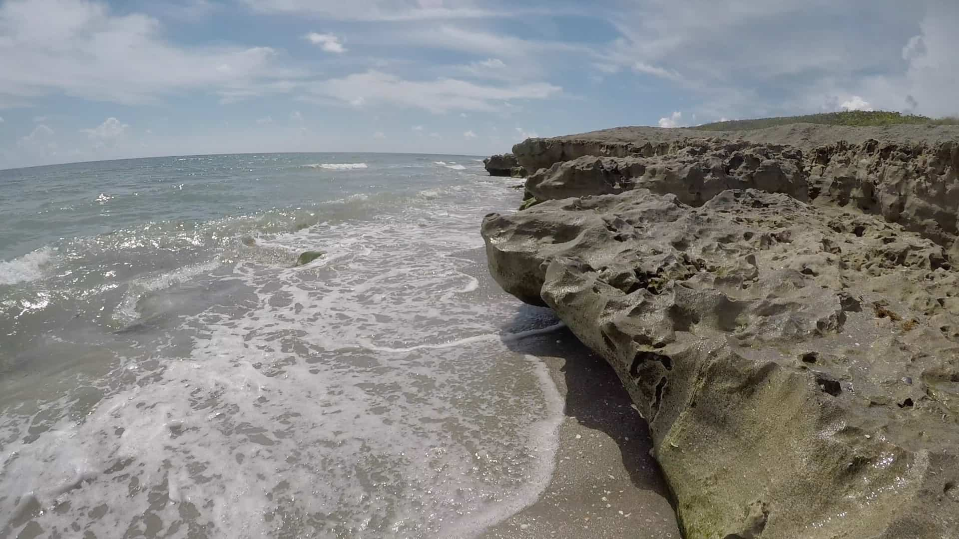 Blowing Rocks Preserve Provides A Close Up Look At Florida