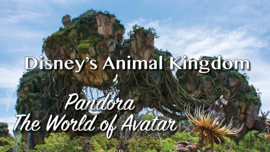 Pandora - The World of Avator at Disney's Animal Kingdom