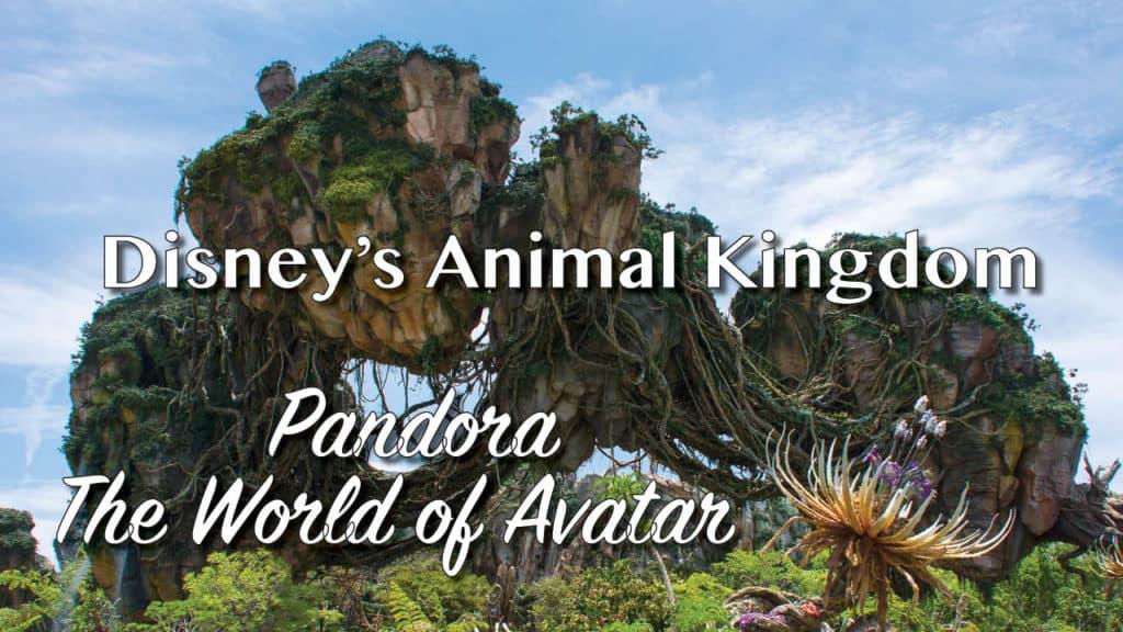 Pandora - The World of Avator at Disney's Animal Kingdom