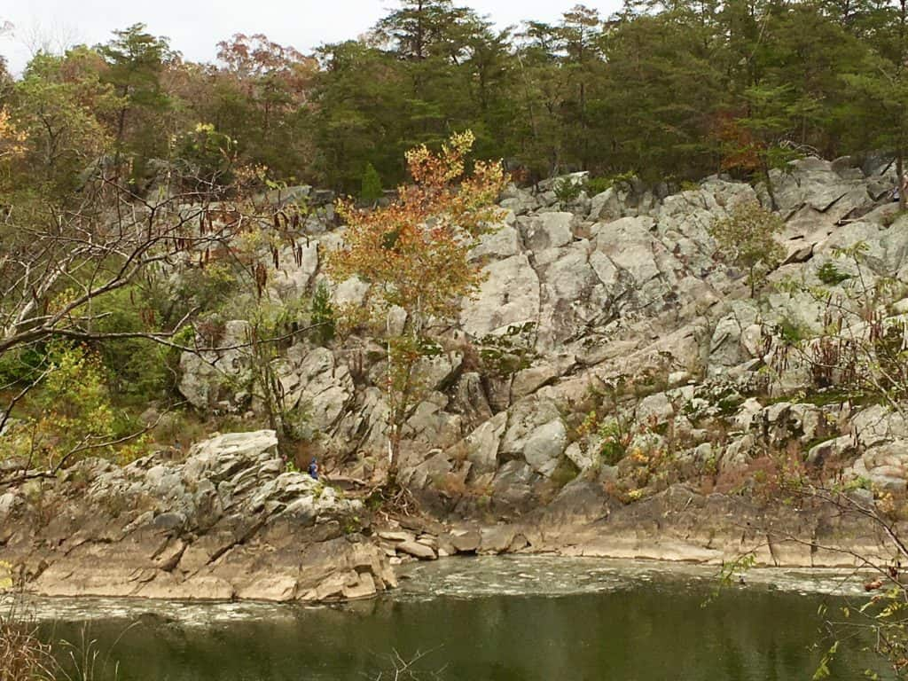 View of the Billy Goat Trail from across the river