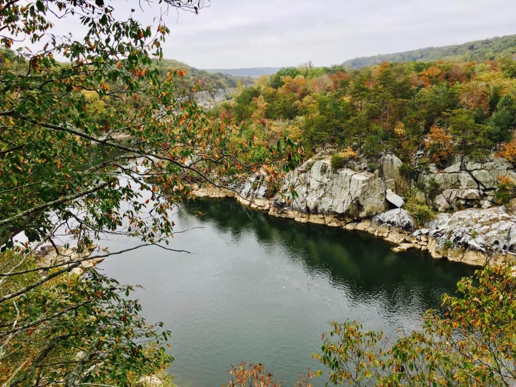 Try These Top 5 Favorite Fall Hikes Near Washington Dc