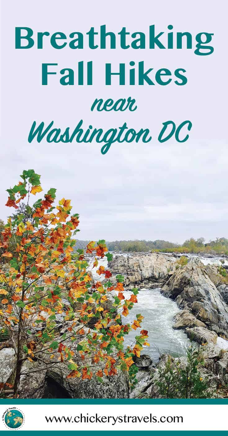 The greater Washington DC region is surrounded by miles of trails, from well-traveled paths through local parks to hidden gems that cross state lines into Virginia and Maryland. Here you'll find the best hiking trails from easy walks close to the city, to more challenging climbs in one of the National parks. This fall your travel bucket list should include a dose of adventure and the great outdoors! Easy hikes and nature walks include Meadowlark Botanical Garden and Roosevelt Island, while the difficulty level can vary at Scott's Run Nature Preserve, Great Falls National Park, and the Chesapeake and Ohio Canal National Historic Park. No list of DC area hikes is complete without a nod to the region's popular Billy Goat trail. #hikes #DC #Virginia #Maryland #DMV