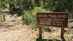 Enjoy the beautiful nature trails at Rainbow Springs State Park.