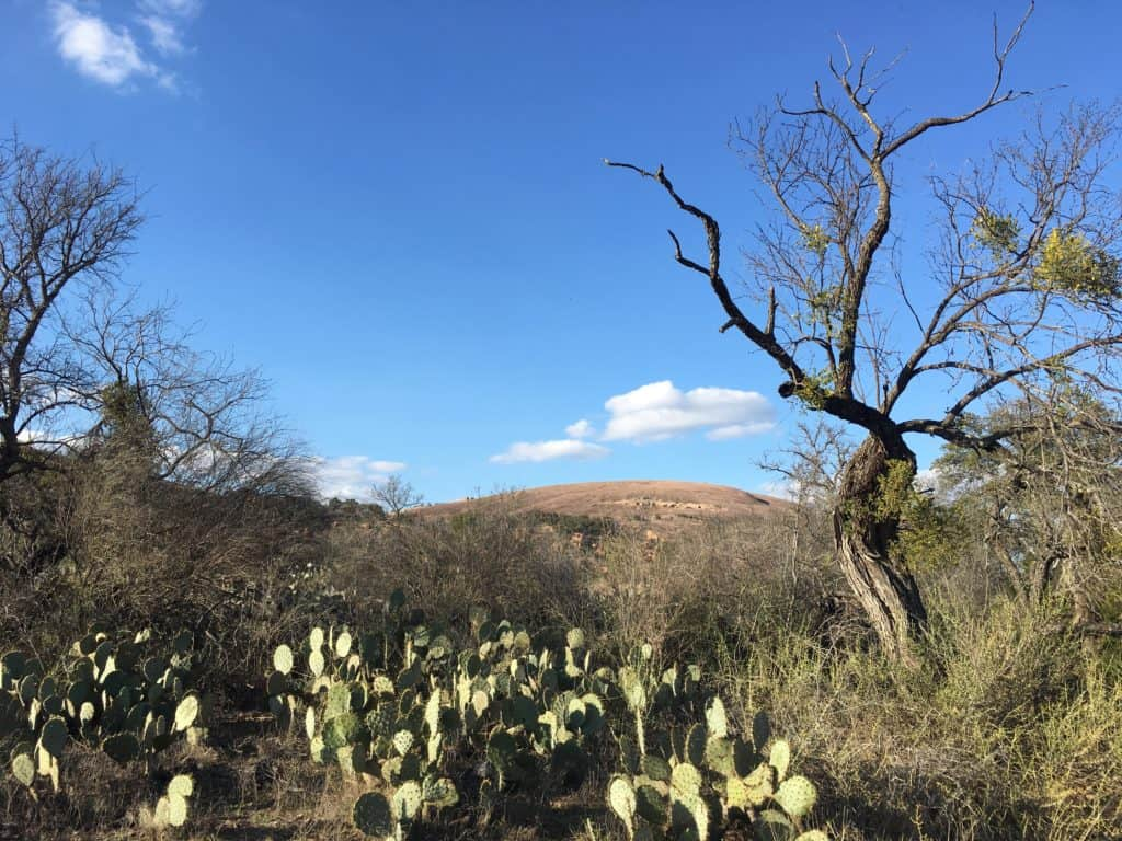 Get a bird's eye view of the Texas Hill Country atop Enchanted Rock. The massive pink granite dome rises rises 425 feet above the base elevation of the park. Its high point is 1,825 feet above sea level, and the entire dome covers 640 acres.