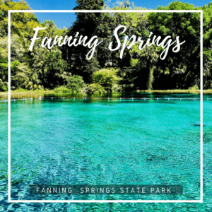 Located along the meandering Suwannee River, Fanning Spring in an inviting source of cool, clear crisp water perfect for swimming and paddling.