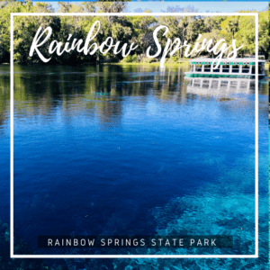 Florida's fourth largest spring, Rainbow Spring in an inviting source of cool, clear crisp water perfect for swimming and paddling.