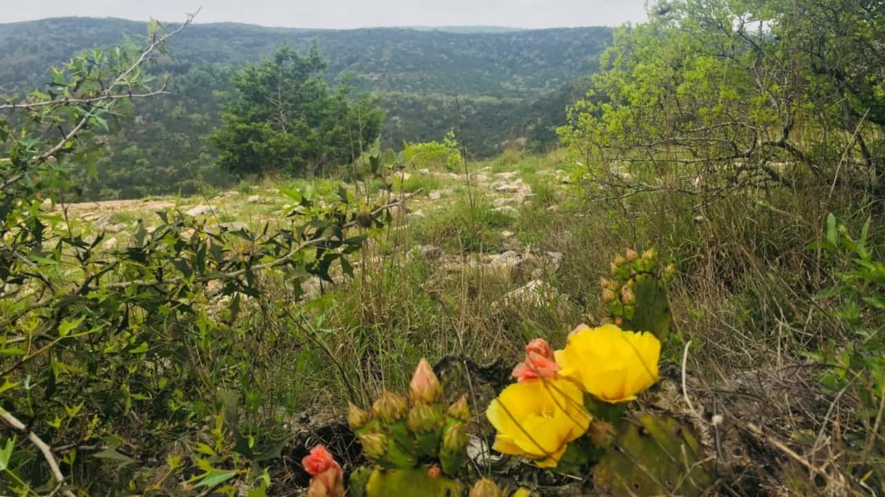 The Texas Hill Country State Natural Area has several multi-use trails ranging from easy to challenging.