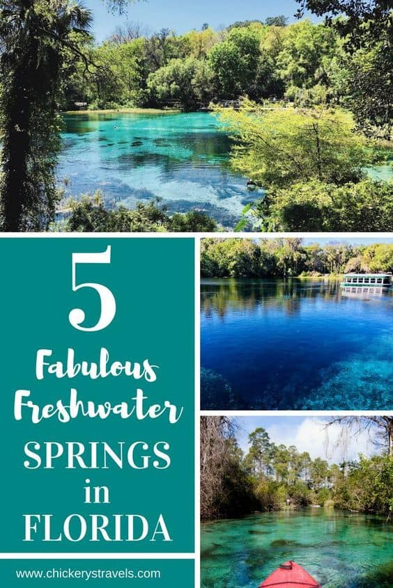 Experience these five fabulous Florida freshwater springs! Each is located within a state park and combine the charm of historic Florida attractions with the most beautiful crystal clear springs in the state. These spectacular springs offer an inviting source of cool, clear crisp water perfect for swimming and paddling.