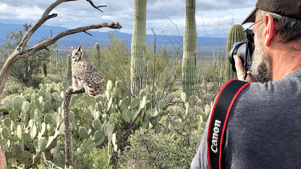 The Arizona-Sonora Desert Museum, a 98-acre zoo, aquarium, botanical garden, natural history museum, and art gallery. The entire outdoor museum was fabulous, but the highlight was definitely the amazing raptor show that occurs twice (both different) a day.