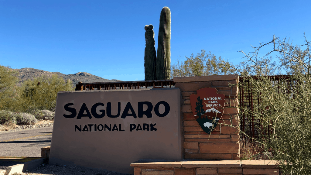 Saguaro National Park park has two sections, east and west that are divided by the city of Tucson.