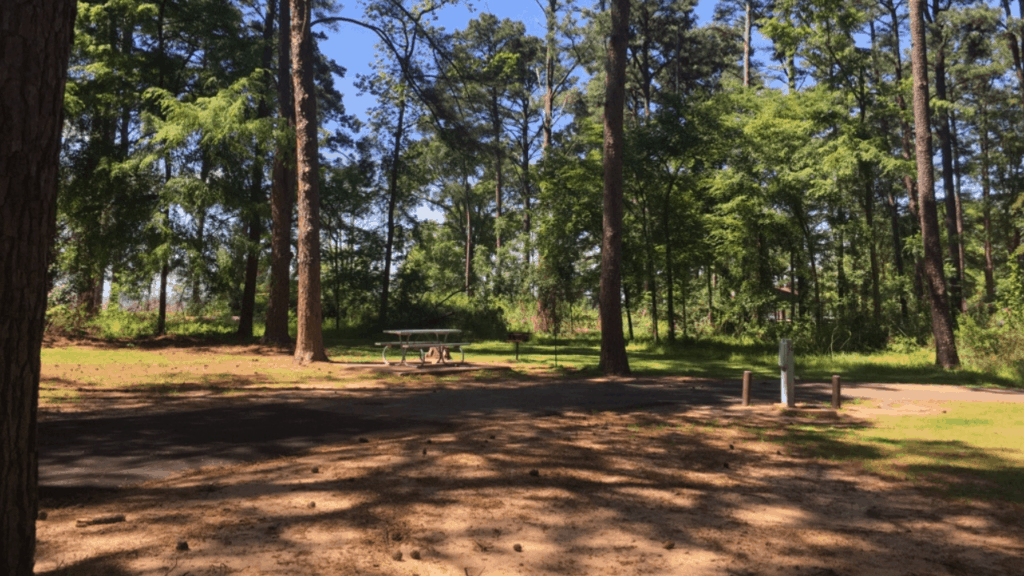 Atlanta State Park has the perfect campground situated on the shores of Wright Patman Lake in the far northeast corner of Texas.