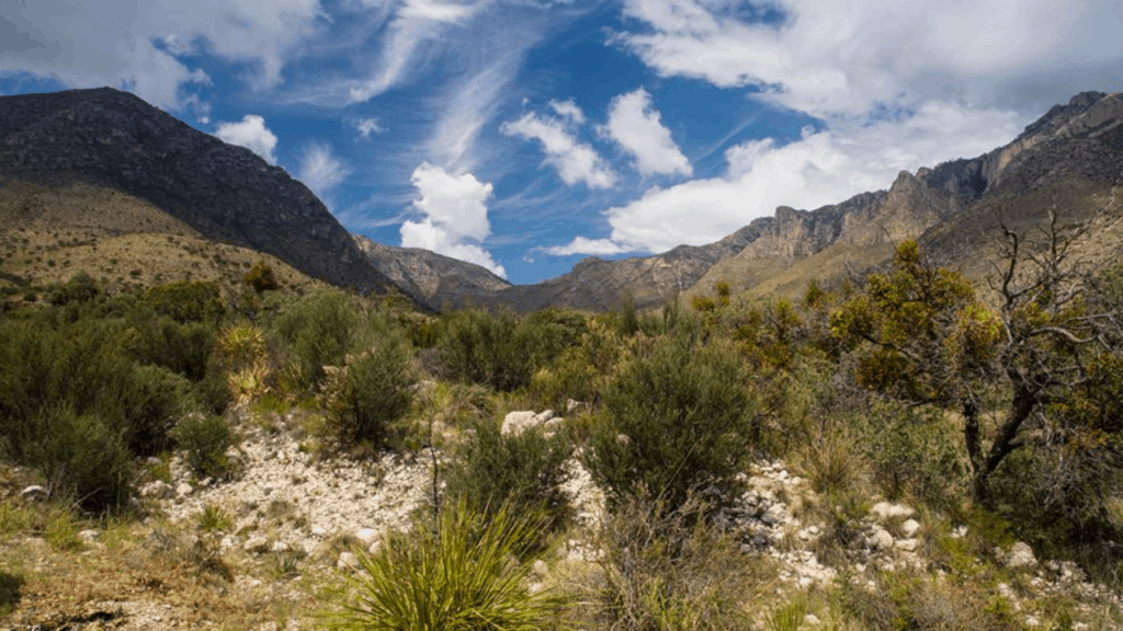 Located in the state's northwest corner, Guadalupe National Park protects the world's most extensive Permian fossil reef and the four highest peaks in Texas. There are two primitive campgrounds available on a first come, first served basis.