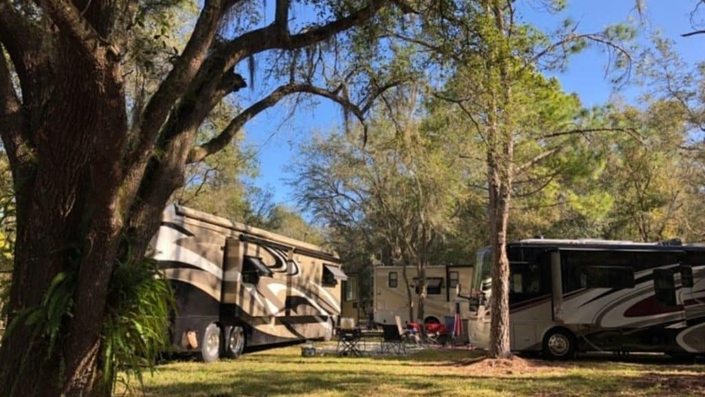 Free camping near Tampa is located at the Washburn Equestrian Area in the Lower Hillsborough Wilderness Preserve managed by the Southwest Florida Water Management District.