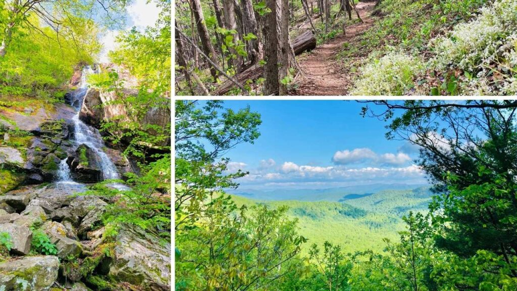 Blue Ridge Parkway overlook and hiking trails