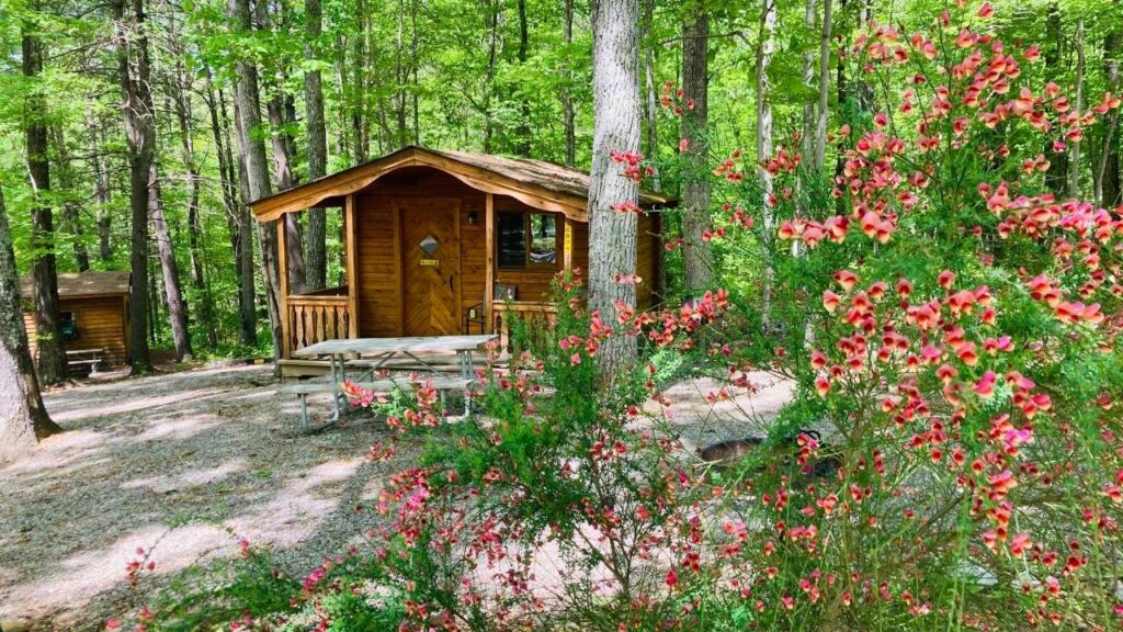 KOA has several different types of camping cabins.